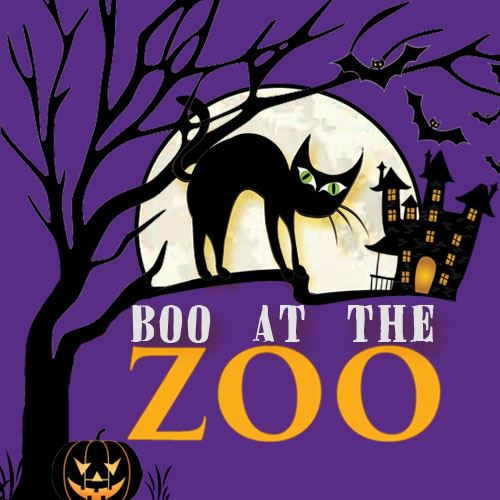 boo at the zoo 2018 website logo