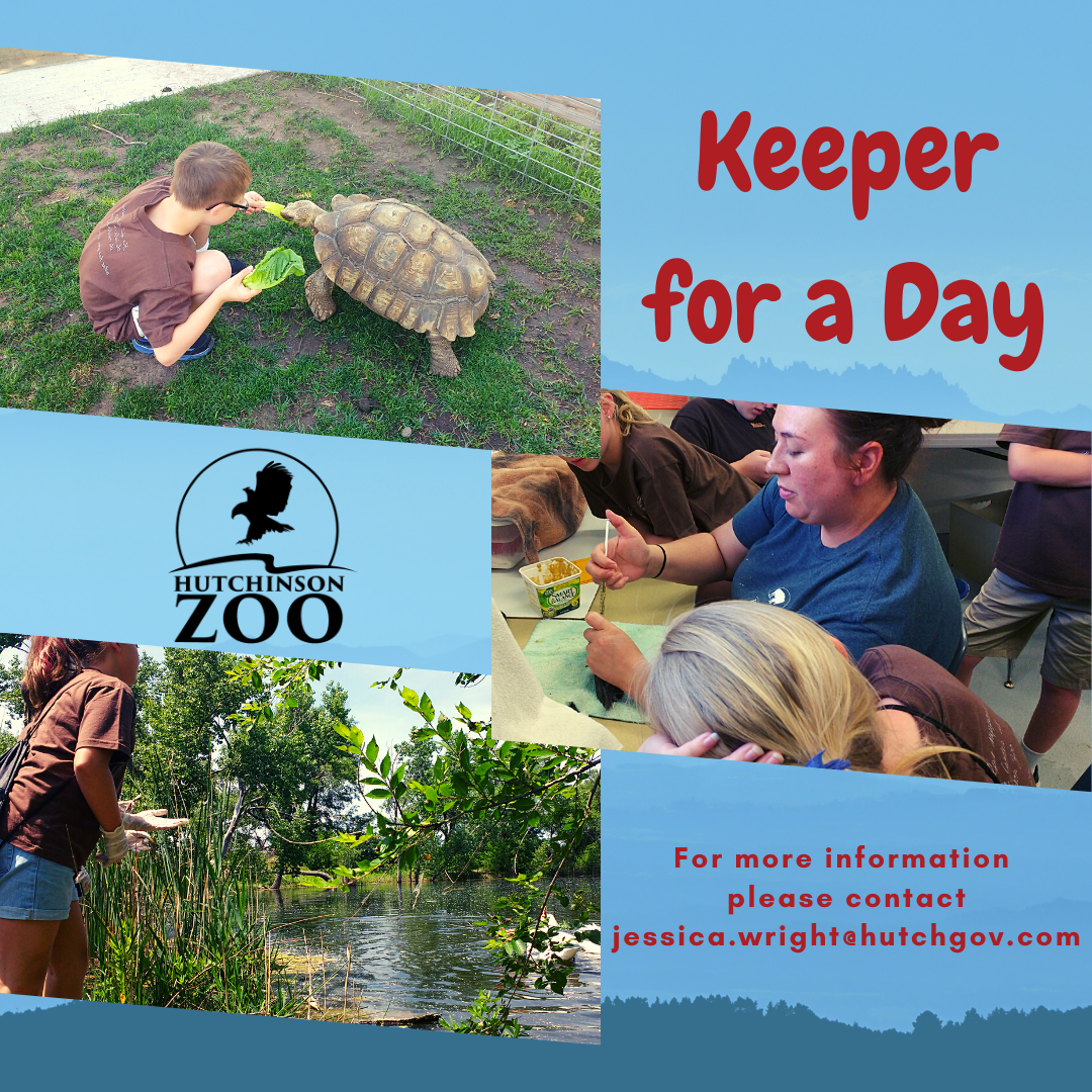 Keeper for a Day