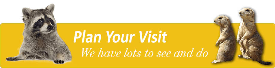 Plan Your Visit Logo